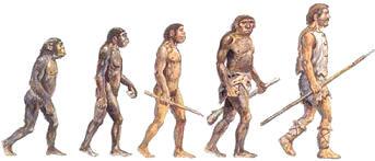 Proceso de hominizaciòn